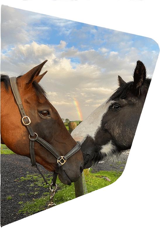 birr-riding-side-img