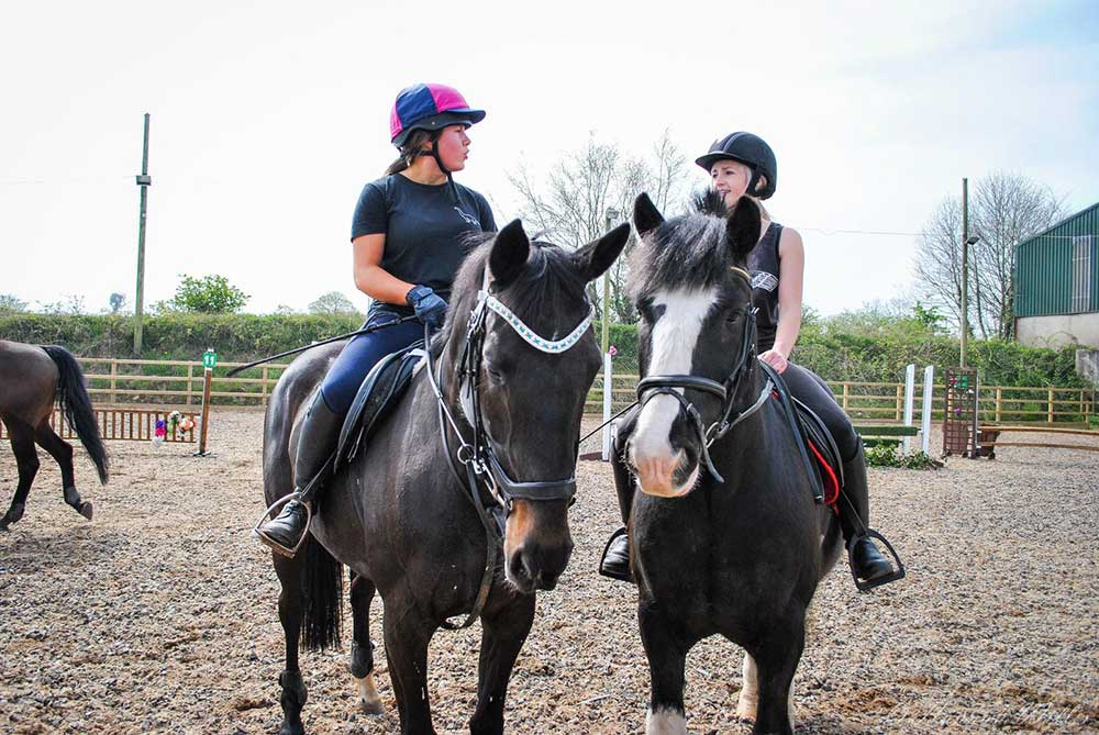riding-lessons-belfast